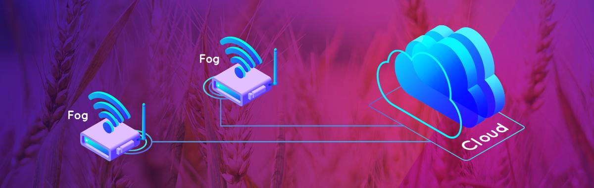 Can fog computing threaten rabbits?